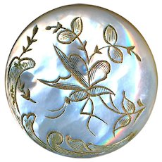 Button---Medium 19th C. Engraved White Pearl Bird in Foliage