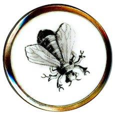Button--Very Fine Mid-19th C. Monochrome Transfer of Bee on Porcelain in Brass