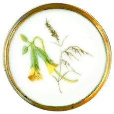 Button--Large Mid-19th C. Polychrome Transfer Porcelain Squash Blossoms & Timothy in Brass
