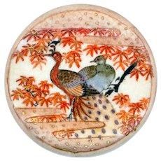 Button-- Extra Large 19th C. Japanese Satsuma Peacocks