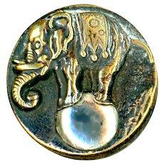 Button--Rare Late 19th C. Circus Elephant on Ball--Medium