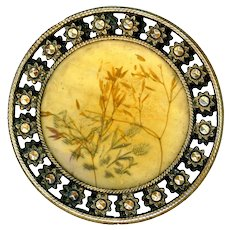 Button--Large Late 19th C. Celluloid Over Stamped Ivoroid & Grass in Brass