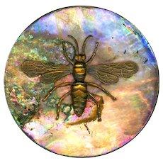 Button--Huge Modern Bronze Patina Wasp on Rainbow Iridescent Pearl