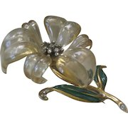 Beautiful Molded Celluloid Or Lucite Huge Vintage Flower Pin Brooch