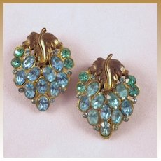 Vintage Grape Cluster Shoe Clips