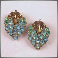 Vintage Grape Cluster Shoe Clips