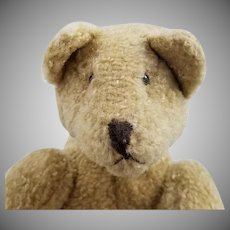 Vintage Articulated Pointed Face Bear