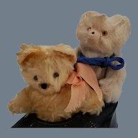 SALE! Charming Old Teddy Bears in a Shoe