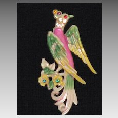 Fabulous Bird of Paradise Brooch/Pin - 1930's