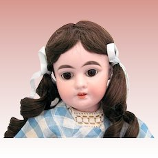 Bisque Head Doll, AM 1894 Dep, 16-Inch on Composition Body, Ca. 1910s