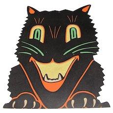 Halloween Black Cat Face Transparency