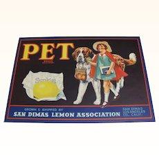 Crate Label Pet Lemon St Bernard Dog