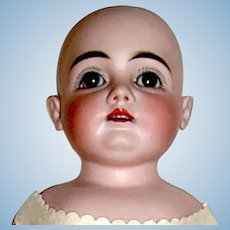 ExceptIonal Kestner 166  Doll — Perfect Head, Great Orig. Kid Body — Ready to Dress