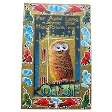 Gorgeous Halloween Postcard - Owl, Gold Castle, Witches—MINT