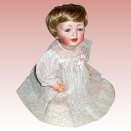 "13"" Hertel & Schwab Bisque Head Toddler Doll Mkd. 152"