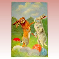 Scarce Easter Fantasy Postcard ~ Large Fighting Rabbits ~ Female and Male