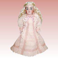 Kestner 166 Cabinet Size Doll - Perfect Head & Kid Body, Mohair Wig, Beautiful Dress