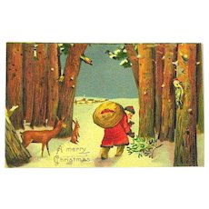 Beautiful Antique Christmas Postcard ~ Santa Claus w Woodland Animals & Birds