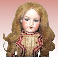 Gorgeous AM 390 Doll, Delightful Costume, Beautiful Vintage Mohair Wig