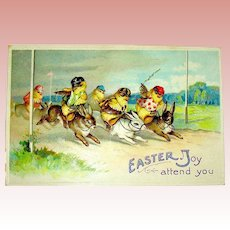 Chick Jockeys Riding Easter Rabbits ~ Great Postcard by Ellen Clapsaddle