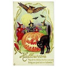 Halloween Postcard—Witches Dancing, JOL, Black Cat ~ Unused