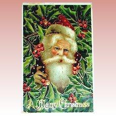 Beautiful Antique Santa Claus GEL Portrait Postcard ~ Series 294   (1 of 3)
