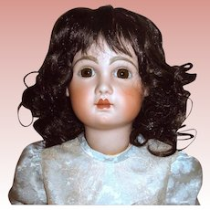 Darkest Brown Vintage Synthetic Mohair Wig w Loose Curls - Sz 16-17
