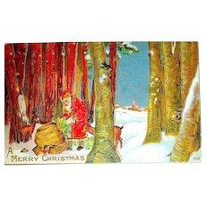 Forest Scene Christmas Postcard - Santa Claus, Deer, Bird, Rabbit - Free Shipping