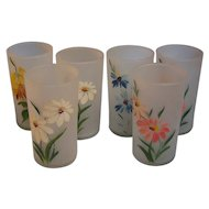 Tumblers Frosted Hand Painted set of 6