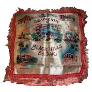 Black Hills Mt Rushmore Pillow Cover Souvenir