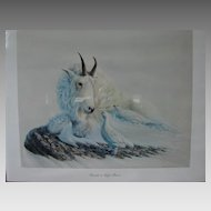 """Dave Samuelson Limited Edition Wildlife Print """"Friends in High Places""""  Original Vintage Lithograph"""