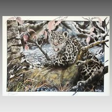 Midnight Snow Leopard Limited Edition Artist Proof 1990 Jason Denaro m/nm