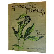 1900 Springtime Flowers Easy Lesson in Botany by Mae Ruth Norcross Illustrated Antique Victorian Horticulture Children's Book