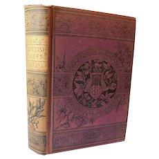 The Scottish Chiefs by Jane Porter Scotland Sir William Wallace Robert the Bruce History Suspense Scottish Novel Romance Antique Victorian Book