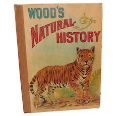Wood's Natural History Zoology Childrens Book Illustrated by Donahue Victorian Antique Animal Book