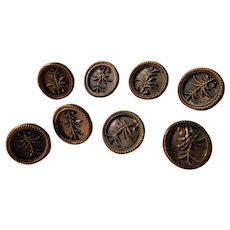 Victorian Set of 8 Matching Picture Sewing Buttons Metal Fern Leaf Motif