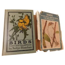 1907 BIRDS Every Child Should Know by Neltje Blanchan Ornithology Illustrated 63 Pages of Photos From Life Antique Book with Dust Jacket