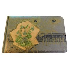 1888 to 1892 Mary C. Lyon Victorian Autograph Book Celluloid Album Green Bay Wisconsin Ironwood Iron Mountain Michigan