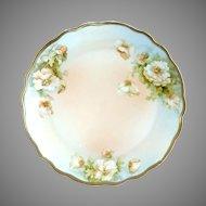 Antique porcelain plate white roses PM Bavaria c. 1904