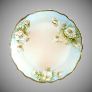 Antique porcelain plate white roses PM Bavaria c. 1904