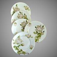 Hermann Ohme fine porcelain tea plates blush roses enameled