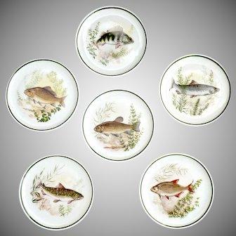 Vintage Bavaria fish butter pats set of 6