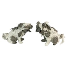 Pair of Ceramic Chinese Crested Dogs