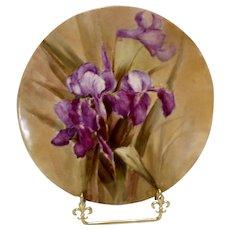 Exquisite Limoges Plaque; Beautiful Purple Irises