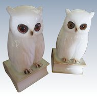 Vintage Deco 1920s Pair Owl Perfume Lamps German Signed