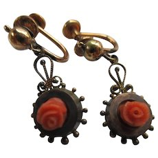 Victorian Carved Coral Drops on Gold Fill Screw Back Earrings