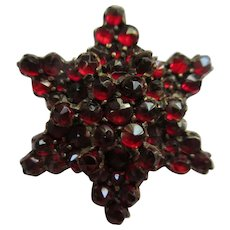 Victorian Antique Bohemian Garnet Pin
