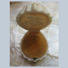 Older Vintage Sea Shell Ring Display Presentation Box