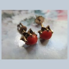 Antique Coral Stud Pierced Earrings in Gold Fill
