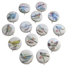 Older Vintage Celluloid Bird Pinback Buttons set 14